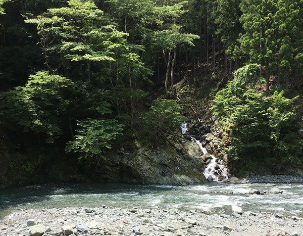 川に行ってきまちた!_c0110361_16371108.jpg