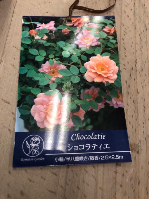 ショコラティエ_c0298879_15405089.jpg