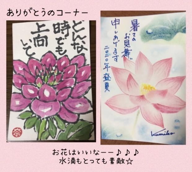 ティアラちゃんアッシュちゃん そらちゃんさくらちゃん_f0375804_19155423.jpg