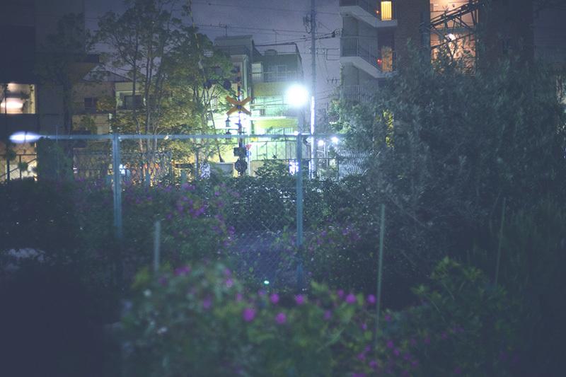 真夜中のガーデン_a0214416_03073933.jpg