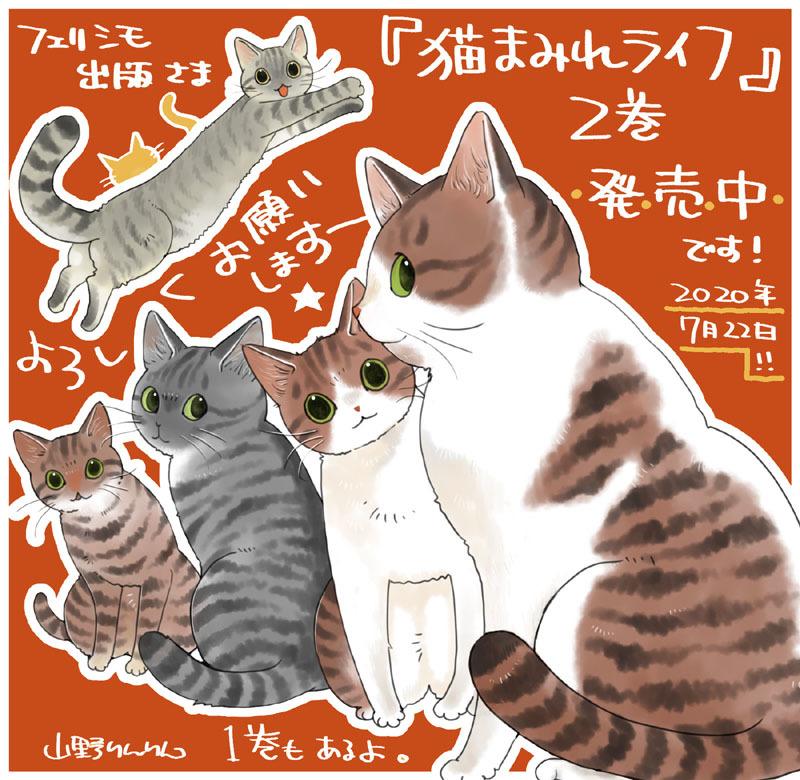 「猫まみれライフ」2巻発売!_d0118933_11091951.jpg