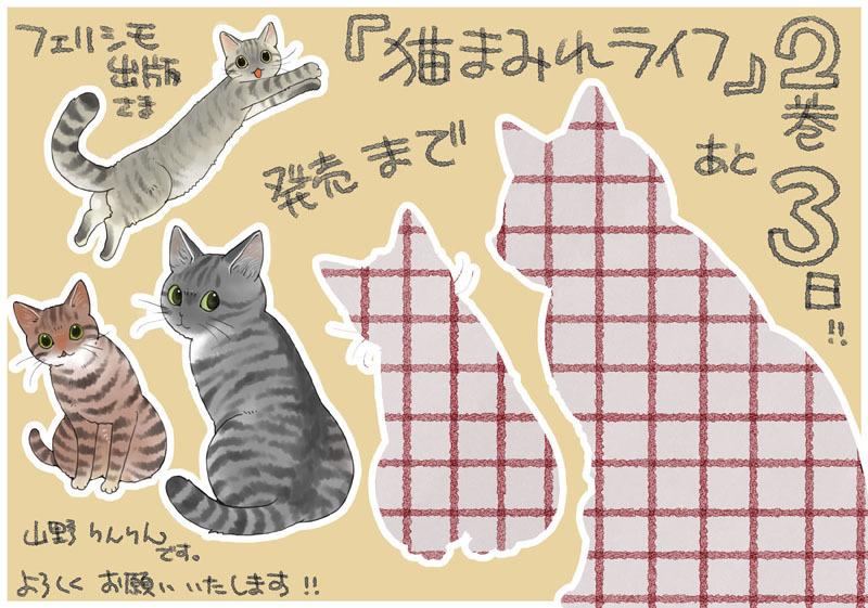 「猫まみれライフ」2巻発売!_d0118933_11093115.jpg