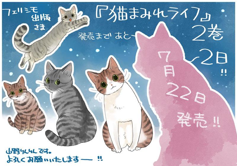 「猫まみれライフ」2巻発売!_d0118933_11093368.jpg