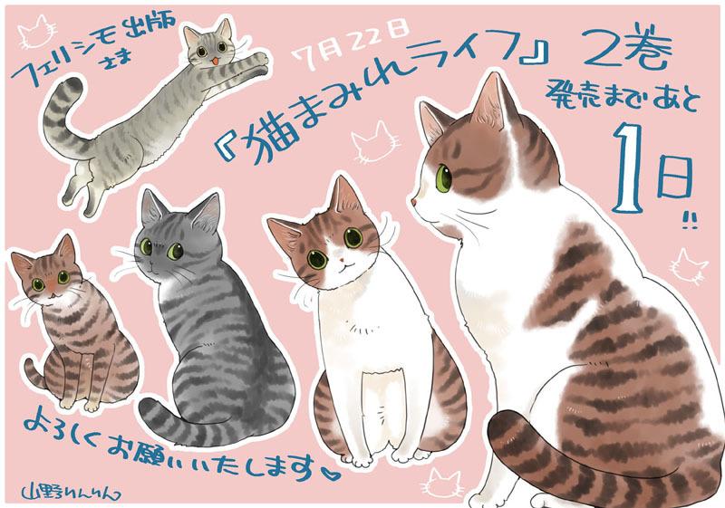 「猫まみれライフ」2巻発売!_d0118933_11093519.jpg