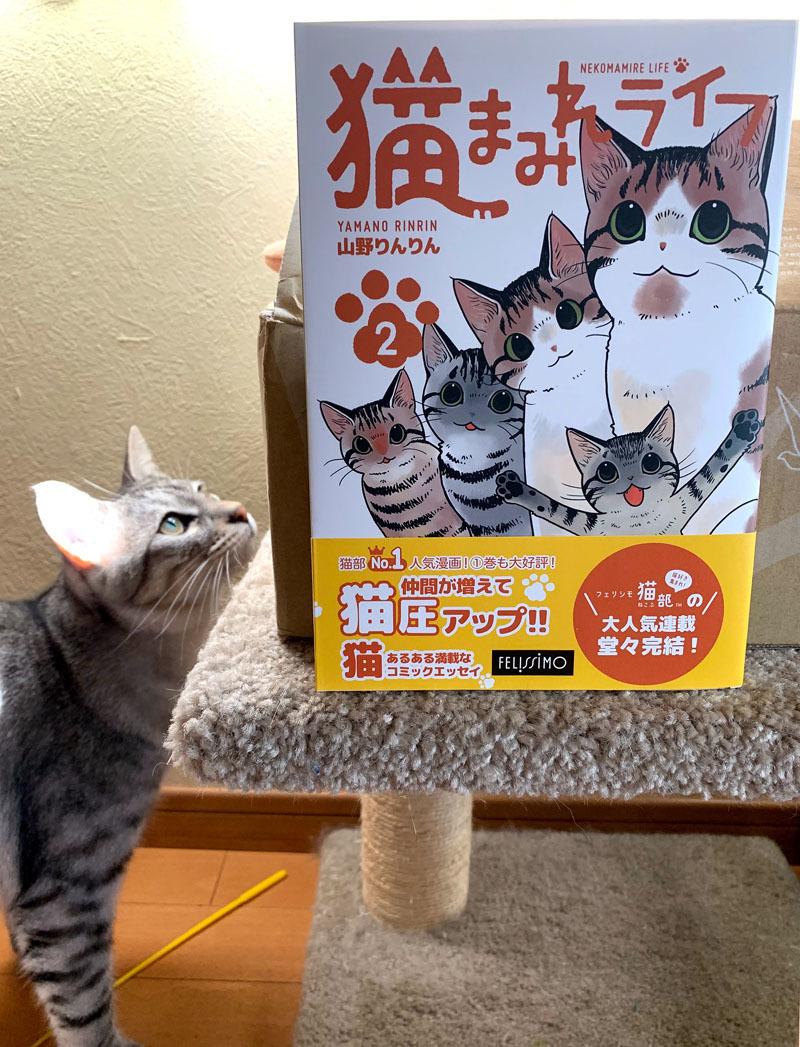 「猫まみれライフ」2巻発売!_d0118933_11093969.jpg