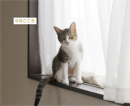 末っ子の座_a0389088_09492090.jpg
