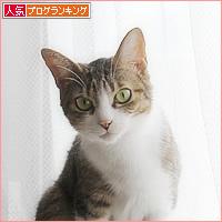 末っ子の座_a0389088_09492172.jpg