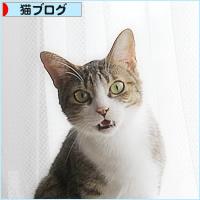 末っ子の座_a0389088_09492180.jpg