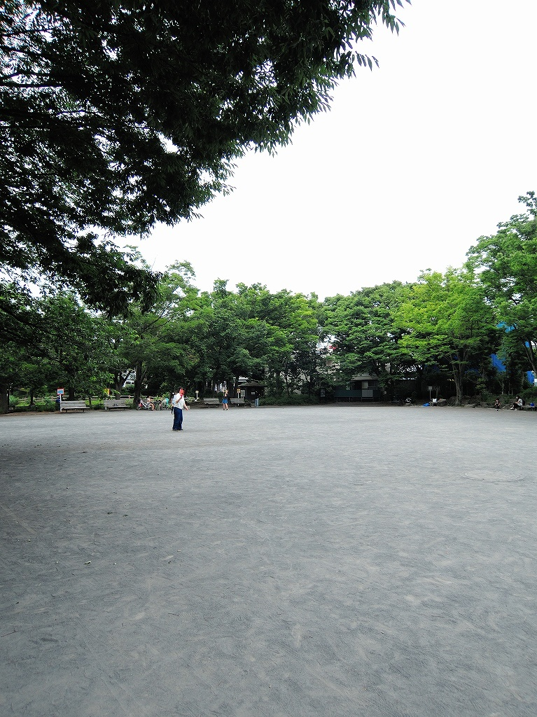 ある風景:Kikuna pond, Yokohama@July #1_c0395834_11560701.jpg