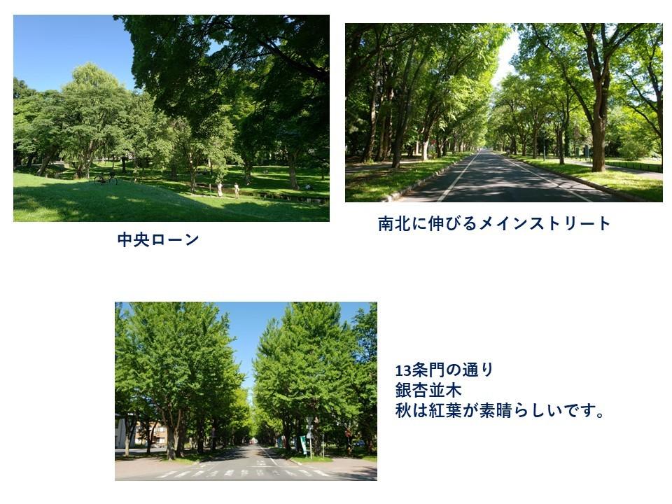 北大散歩_d0225752_23435883.jpg