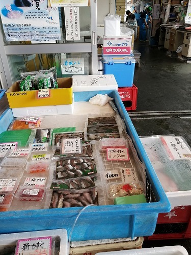 小浜の市場_f0106664_19003349.jpg