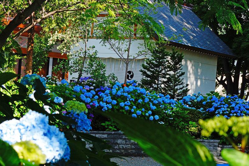 西野神社_d0162994_08202401.jpg