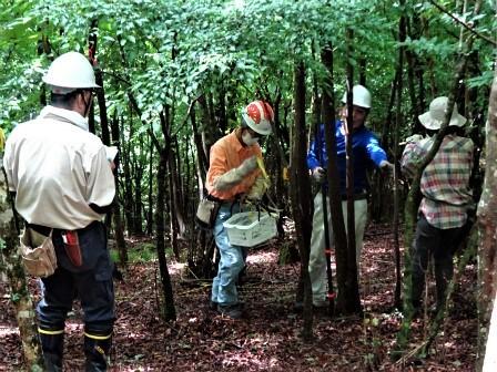 みんなの森活動日記_d0105723_08144975.jpg
