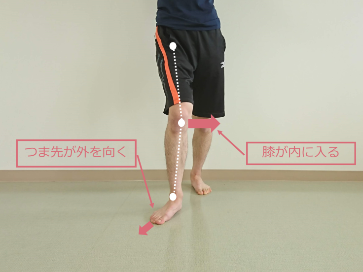 Knee-in&Toe-out(KITO)における関節運動_b0329026_12245464.png