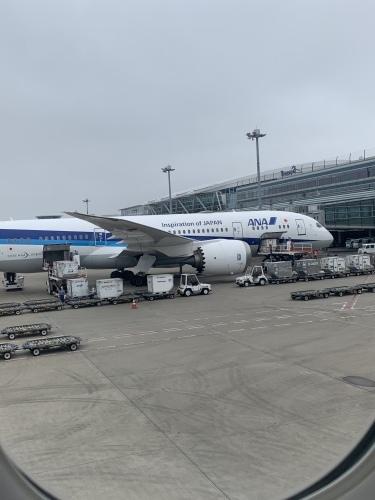 旅最大の目的は、飛行機です_b0228252_20291733.jpeg