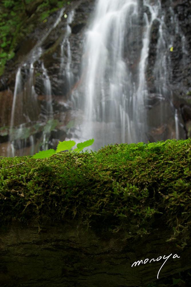 夏の滝_c0085877_05103312.jpg