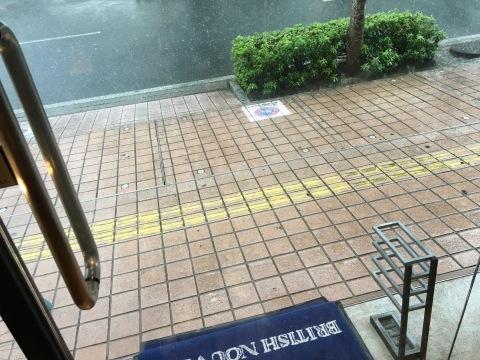 ♬ 雨わぁ〜降るぅ〜貴方わ来ないぃ〜 ♬_f0039487_12292742.jpg