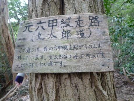 横尾道 ~ 文太郎尾根 ~ 東山_c0218841_12240425.jpg