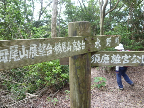 横尾道 ~ 文太郎尾根 ~ 東山_c0218841_15213661.jpg