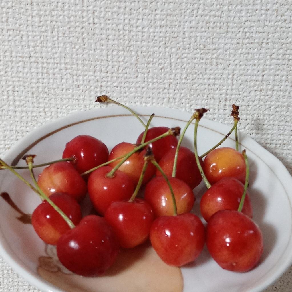 さくらんぼ_d0380843_08052984.jpg