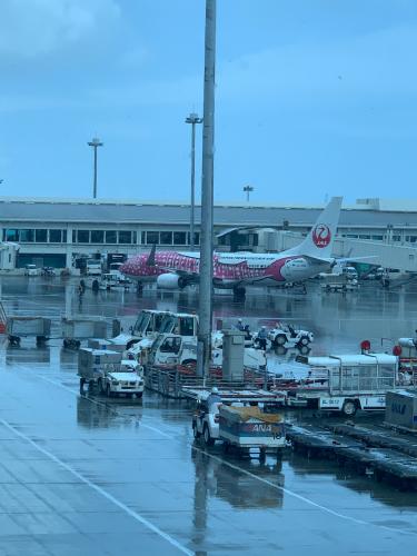 旅最大の目的は、飛行機です_b0228252_11292130.jpg