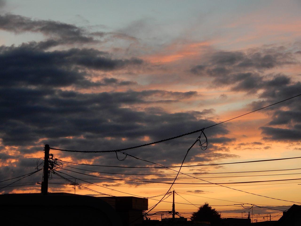 夏日にはなるがなんとなく寒い日々_c0025115_22374308.jpg