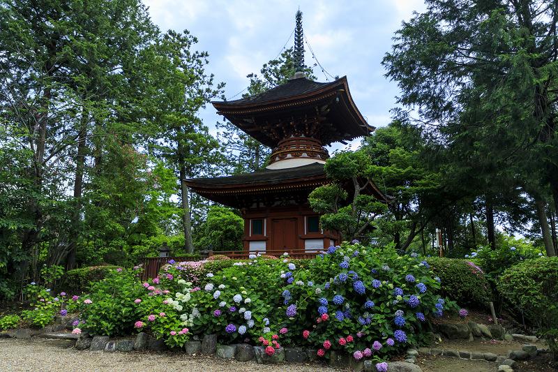 紫陽花咲く久米寺と近畿日本鉄道_f0155048_23454468.jpg