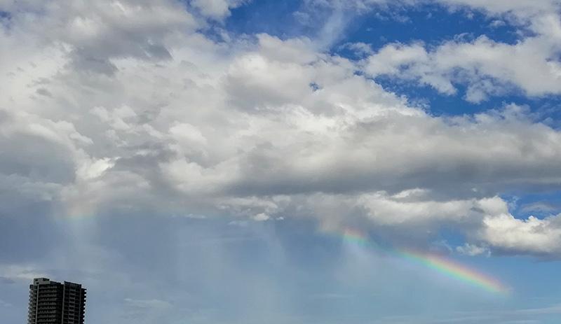 虹と飛行機と猫_a0003650_22241423.jpg