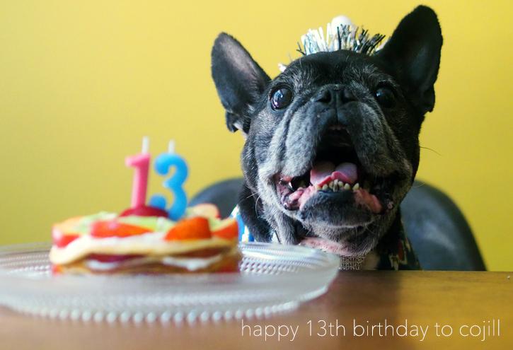 happy 13th birthday to cojill_e0243765_14313115.jpg