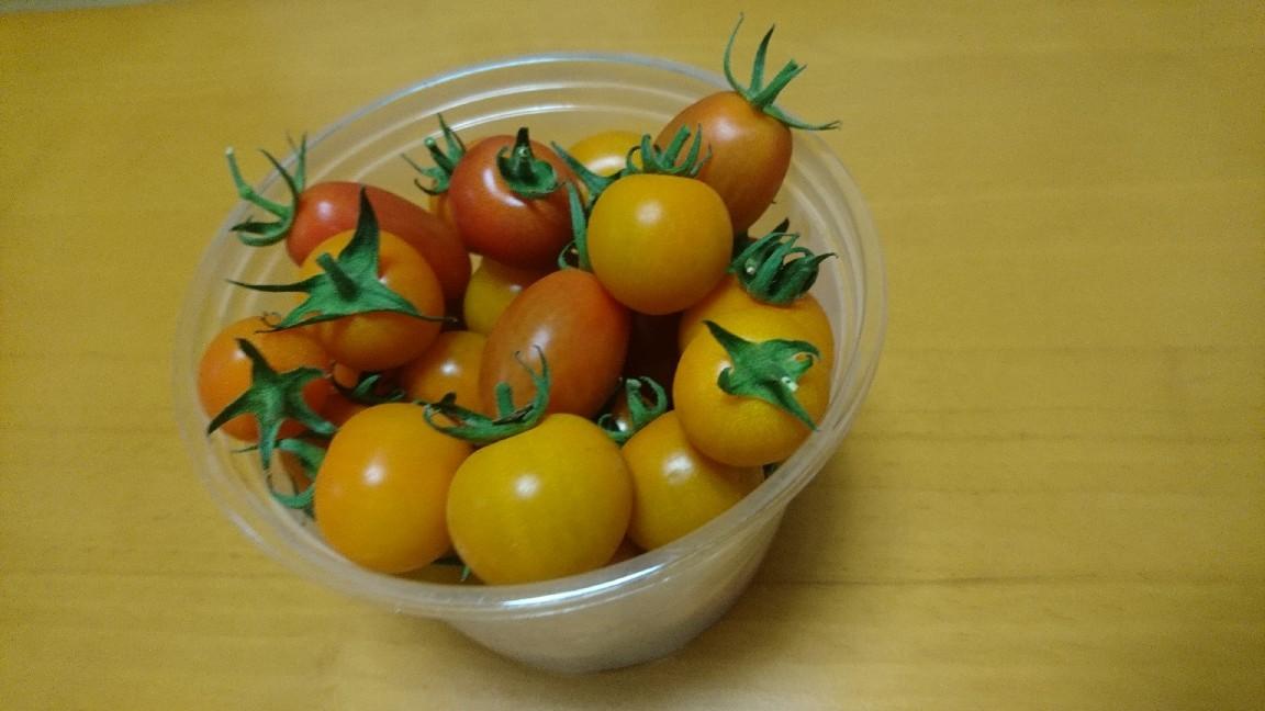 ミニトマトの収穫_b0106766_20533161.jpg