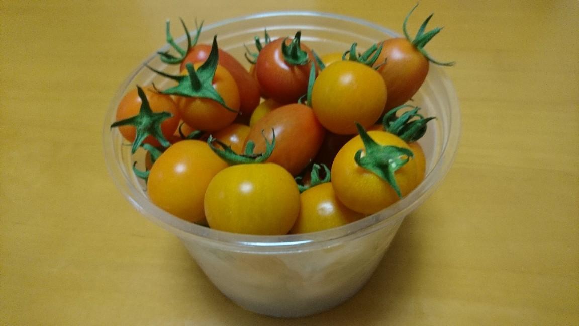 ミニトマトの収穫_b0106766_20533197.jpg