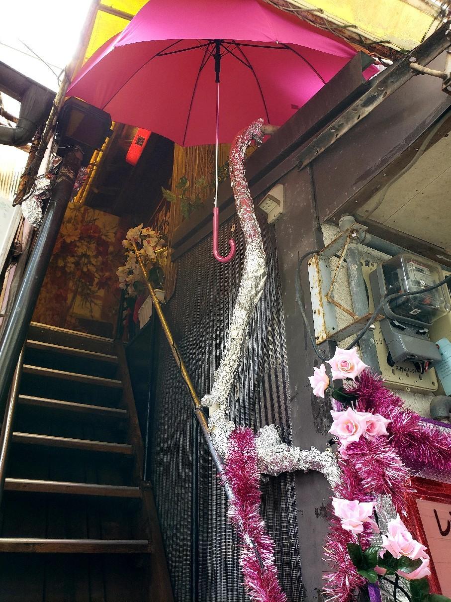 薔薇色の階段_c0193077_15521340.jpg