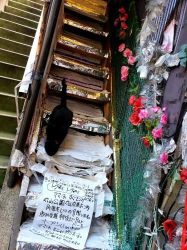 薔薇色の階段_c0193077_15521439.jpg