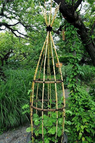 竹、笹リレー その1_e0348392_19373215.jpg