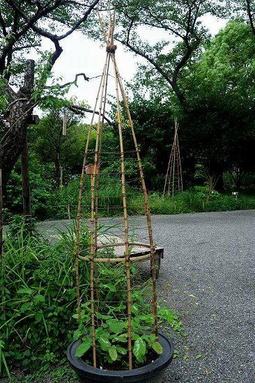 竹、笹リレー その1_e0348392_19385241.jpg