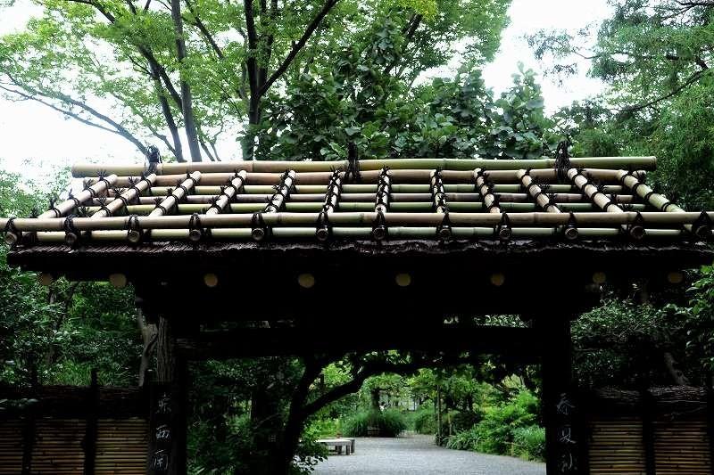 竹、笹リレー その1_e0348392_19390652.jpg
