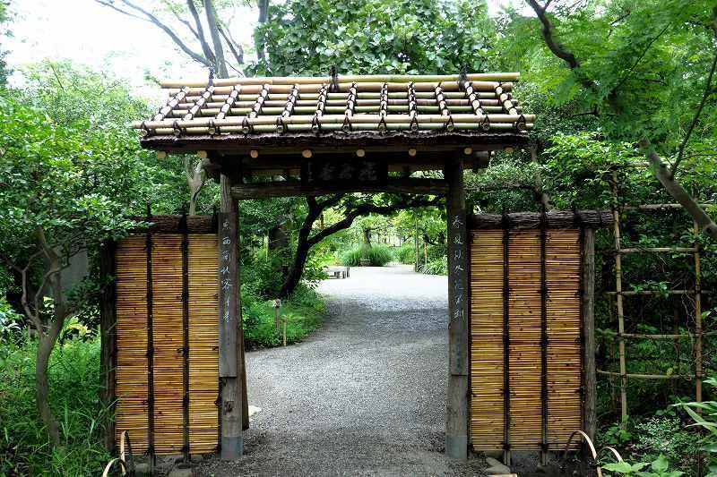 竹、笹リレー その1_e0348392_19390988.jpg