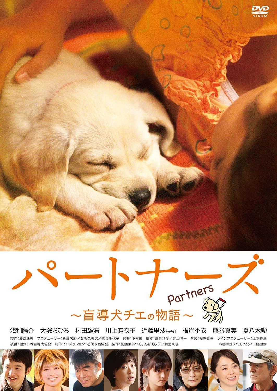 盲導犬映画に感動!_c0193396_11411334.jpg