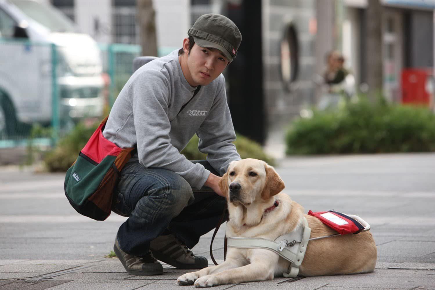 盲導犬映画に感動!_c0193396_11415291.jpg