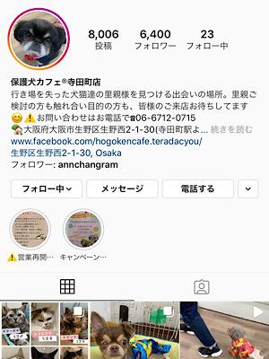 HOGO犬ひらり♡避妊手術と歯石取り_f0249610_11043963.jpeg