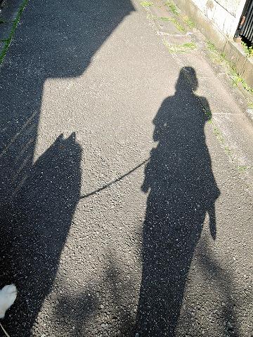 散歩屋日誌【46】_c0062832_17260337.jpg