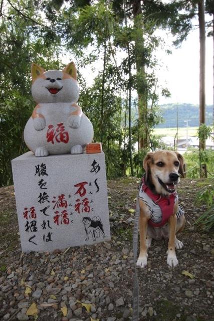 県内旅行1日目 八坂神社から大館市「秋田犬の里」へ_b0031538_14251828.jpg
