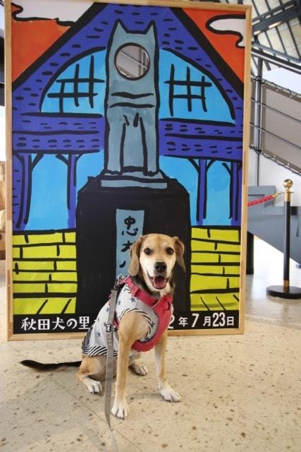 県内旅行1日目 八坂神社から大館市「秋田犬の里」へ_b0031538_15252442.jpg