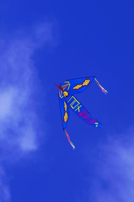羊ヶ丘展望台の大凧 コロナ撃退_d0001157_10514139.jpg