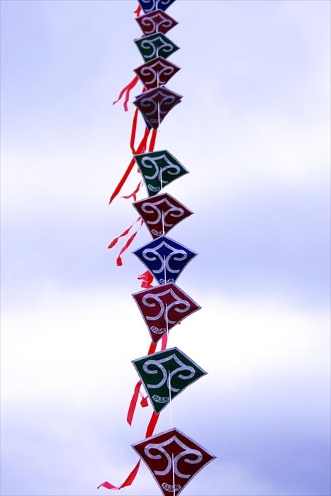 ウポポイ応援の連凧_d0001157_10564166.jpg