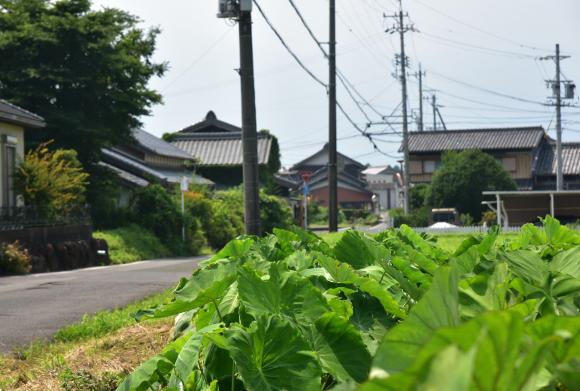 三重歴史街道「八風道」を行く_e0164563_10255550.jpg