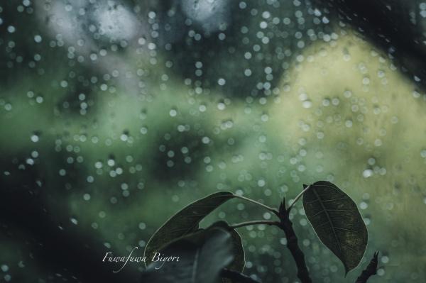 もう雨はいらない **_d0344864_21335515.jpg