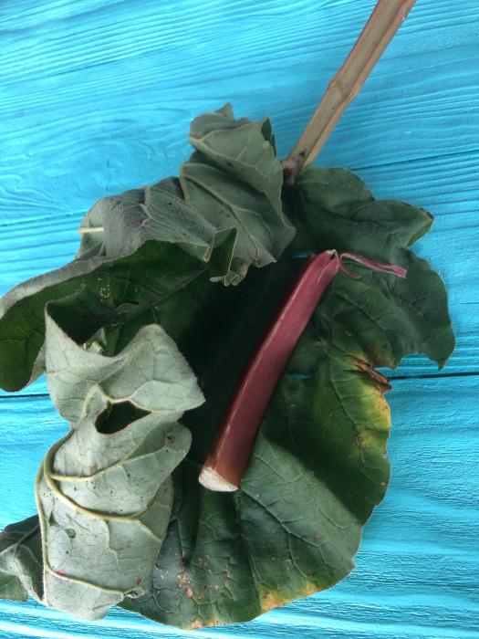 癒しと静養と竹細工と自然。  長文です_d0105967_04095263.jpg