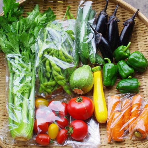 今週の野菜セット(7/28~8/1着)_c0110869_12364822.jpg