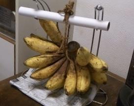 バナナの成長_e0158687_21532913.jpeg